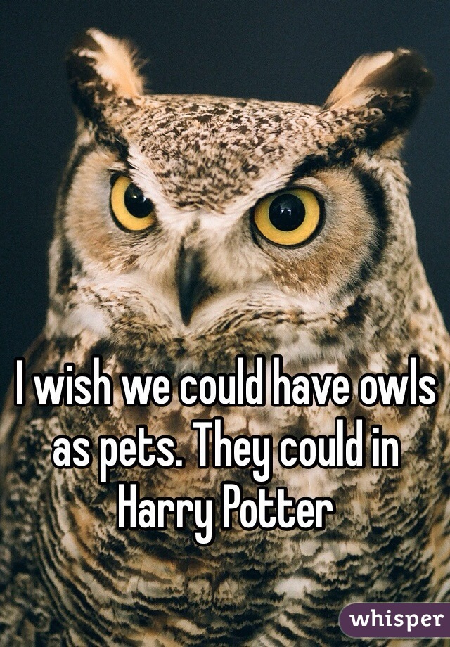 I wish we could have owls as pets. They could in Harry Potter