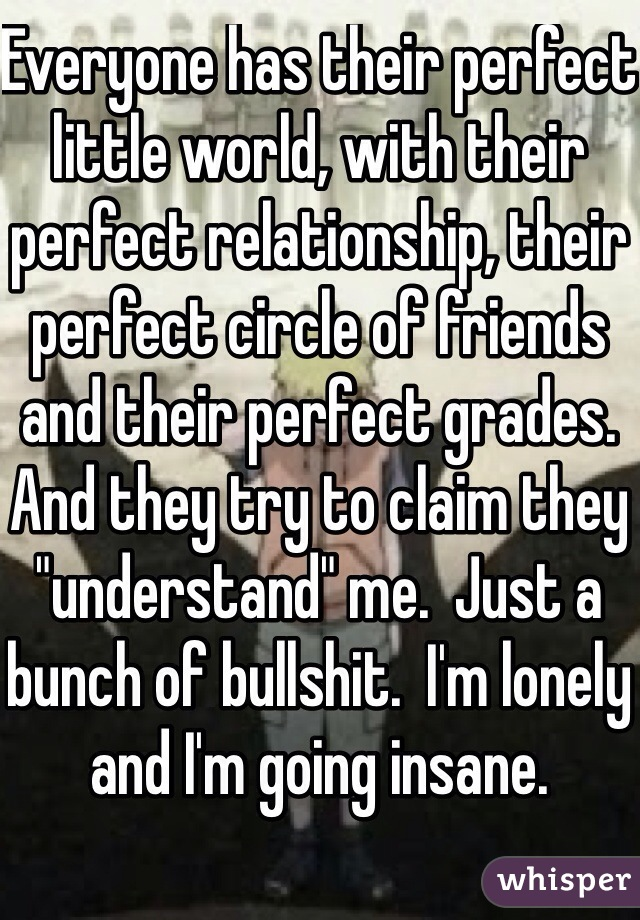 "Everyone has their perfect little world, with their perfect relationship, their perfect circle of friends and their perfect grades.  And they try to claim they ""understand"" me.  Just a bunch of bullshit.  I'm lonely and I'm going insane."
