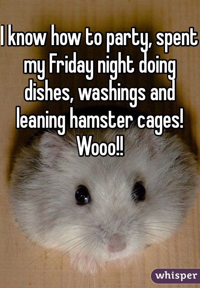 I know how to party, spent my Friday night doing dishes, washings and leaning hamster cages! Wooo!!