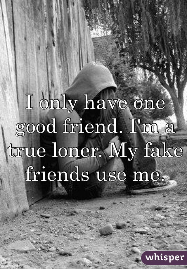 I only have one good friend. I'm a true loner. My fake friends use me.