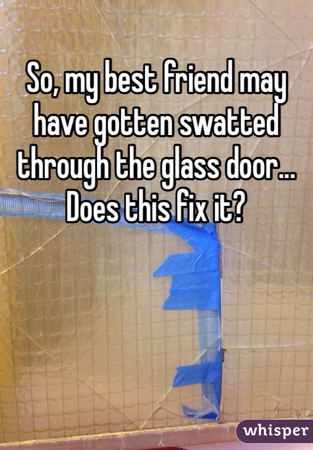 So, my best friend may have gotten swatted through the glass door... Does this fix it?