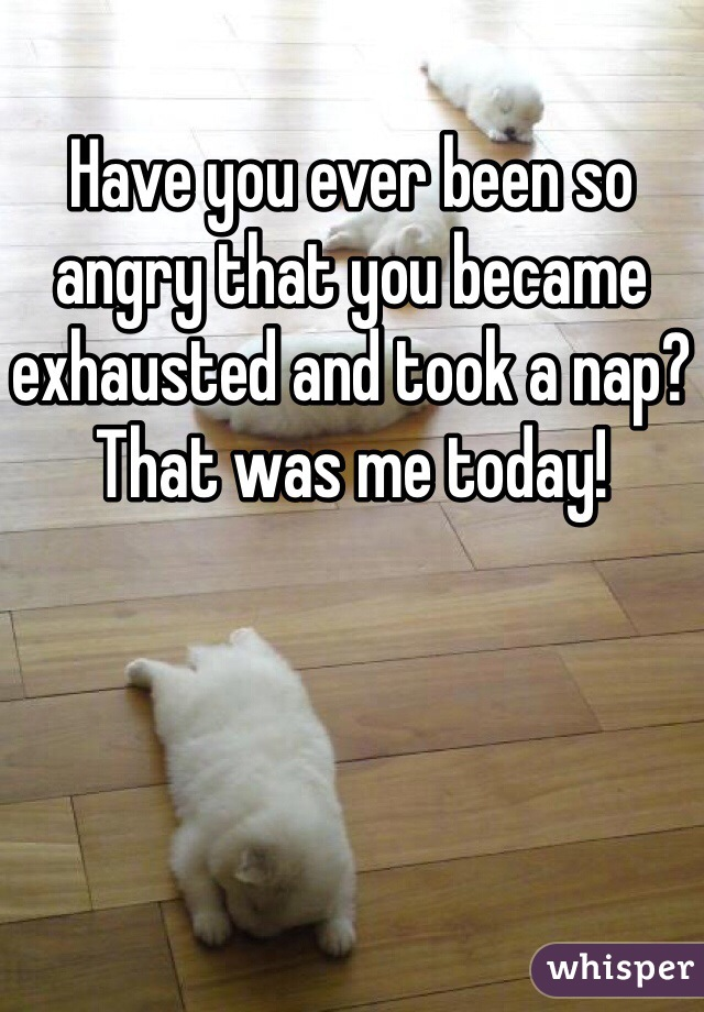 Have you ever been so angry that you became exhausted and took a nap? That was me today!