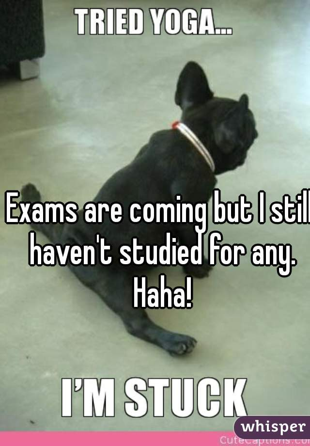 Exams are coming but I still haven't studied for any. Haha!