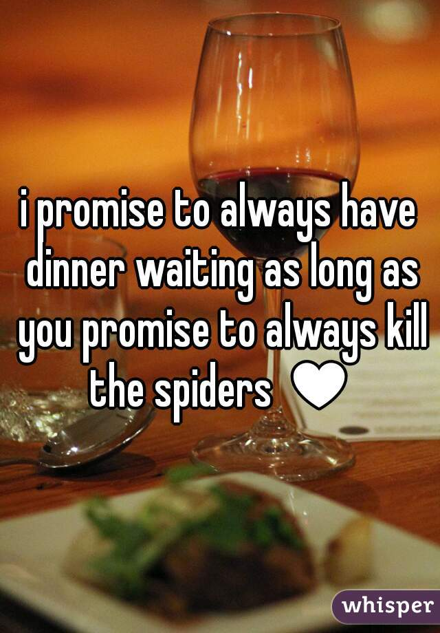 i promise to always have dinner waiting as long as you promise to always kill the spiders ♥