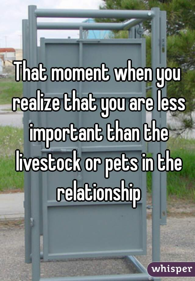 That moment when you realize that you are less important than the livestock or pets in the relationship