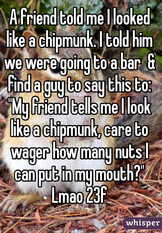 """A friend told me I looked like a chipmunk. I told him we were going to a bar  & find a guy to say this to: """"My friend tells me I look like a chipmunk, care to wager how many nuts I can put in my mouth?"""" Lmao 23f"""