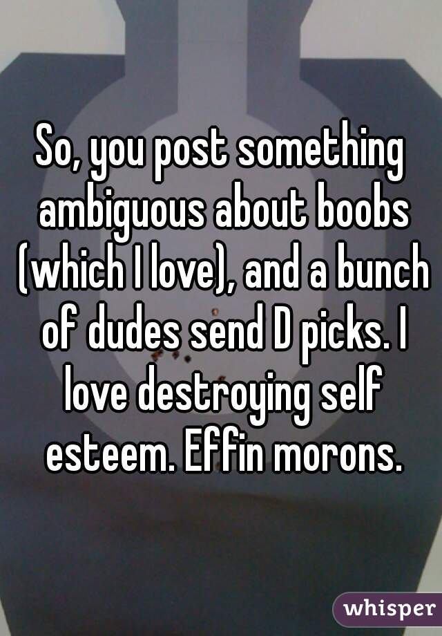 So, you post something ambiguous about boobs (which I love), and a bunch of dudes send D picks. I love destroying self esteem. Effin morons.