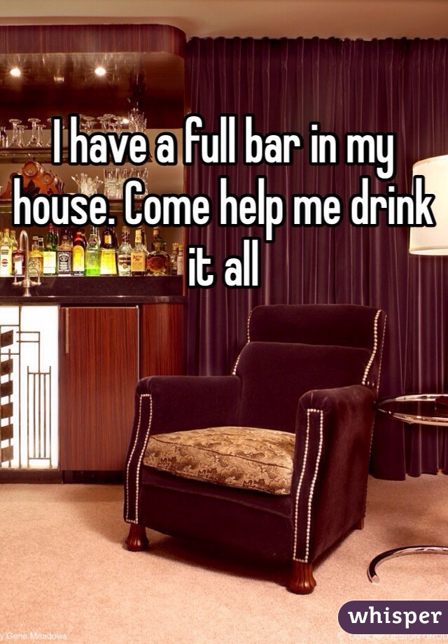 I have a full bar in my house. Come help me drink it all