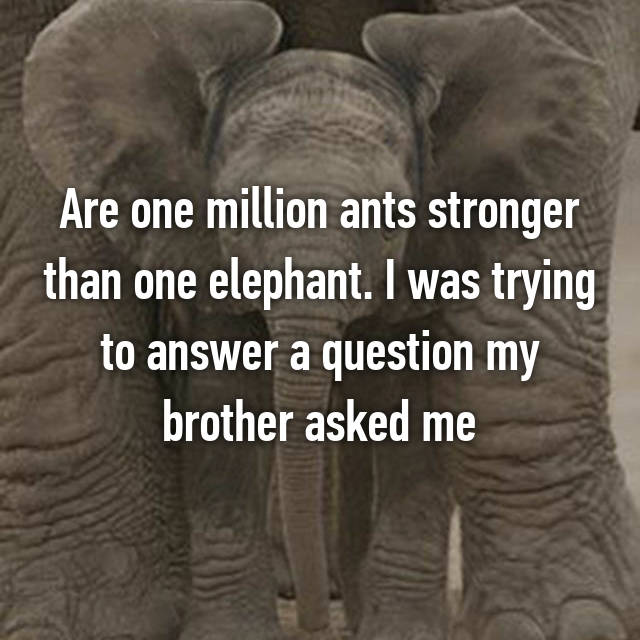 Are one million ants stronger than one elephant. I was trying to answer a question my brother asked me