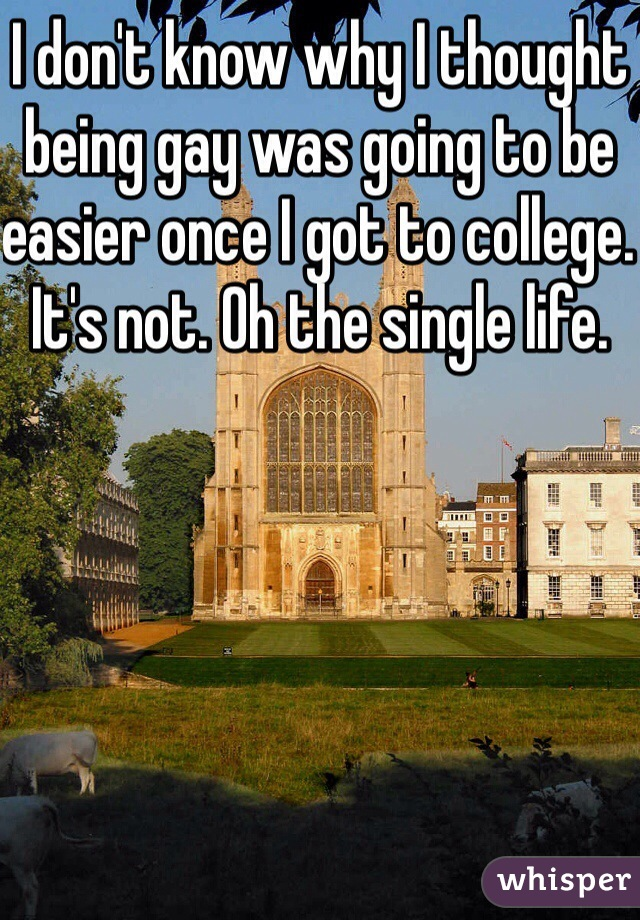 I don't know why I thought being gay was going to be easier once I got to college. It's not. Oh the single life.