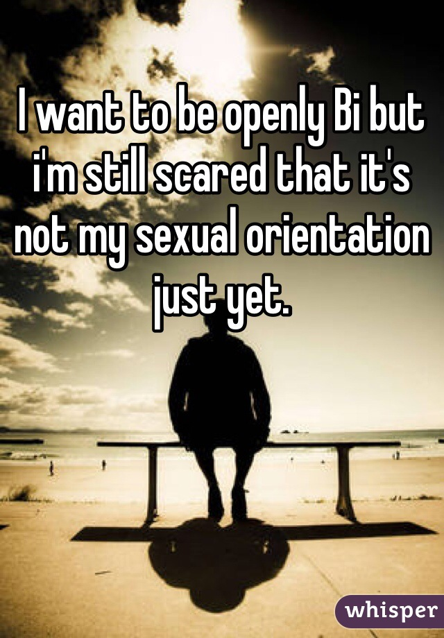 I want to be openly Bi but i'm still scared that it's not my sexual orientation just yet.