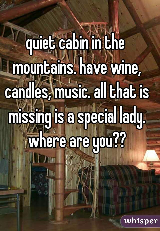 quiet cabin in the mountains. have wine, candles, music. all that is missing is a special lady. where are you??