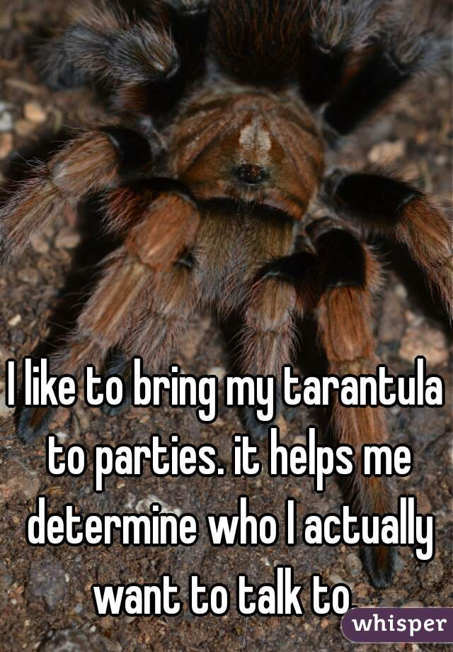 I like to bring my tarantula to parties. it helps me determine who I actually want to talk to.