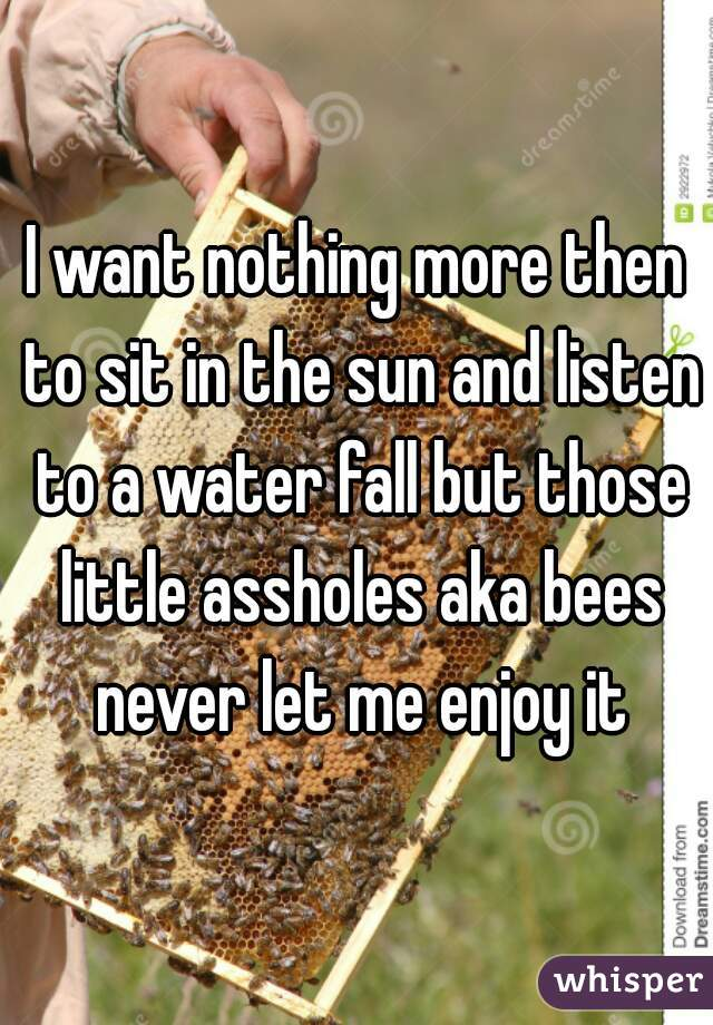 I want nothing more then to sit in the sun and listen to a water fall but those little assholes aka bees never let me enjoy it