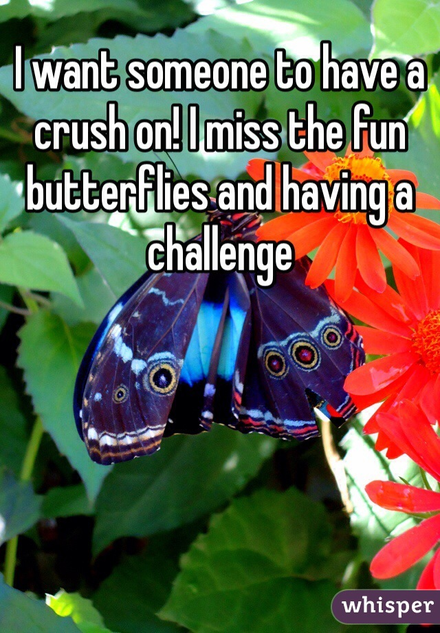 I want someone to have a crush on! I miss the fun butterflies and having a challenge