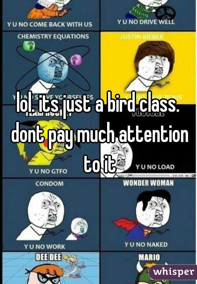 lol. its just a bird class. dont pay much attention to it