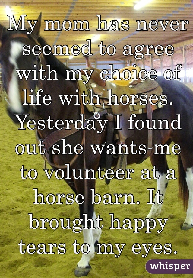 My mom has never seemed to agree with my choice of life with horses. Yesterday I found out she wants me to volunteer at a horse barn. It brought happy tears to my eyes.