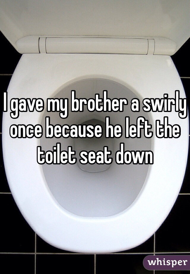 I gave my brother a swirly once because he left the toilet seat down