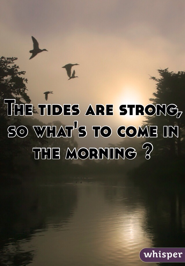 The tides are strong, so what's to come in the morning ?