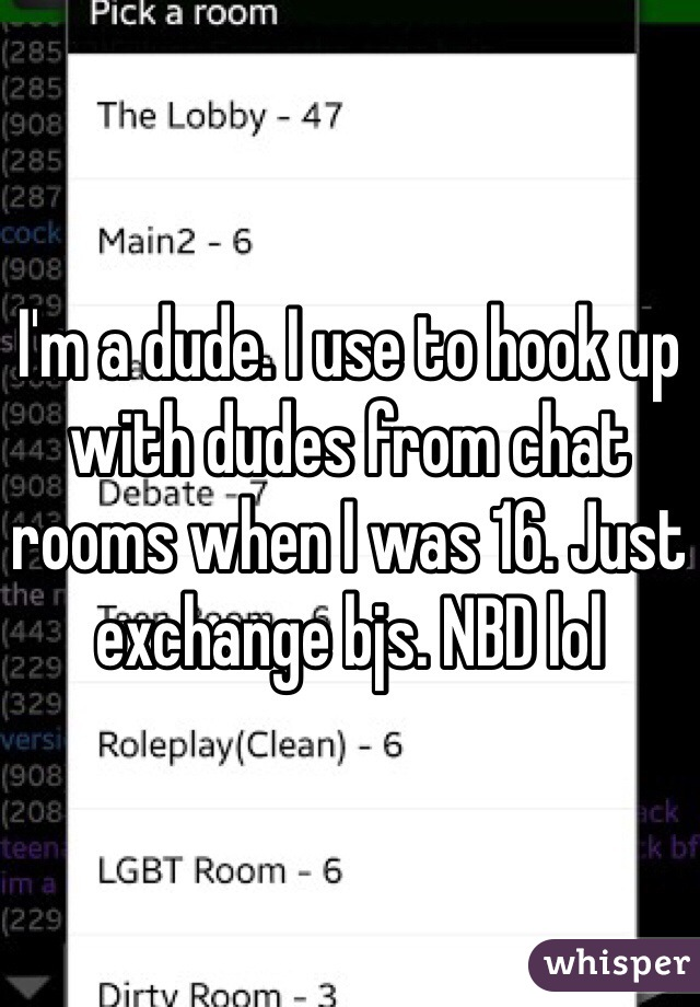 I'm a dude. I use to hook up with dudes from chat rooms when I was 16. Just exchange bjs. NBD lol