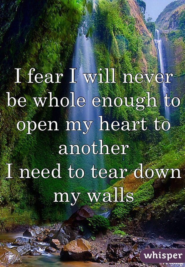 I fear I will never be whole enough to open my heart to another I need to tear down my walls