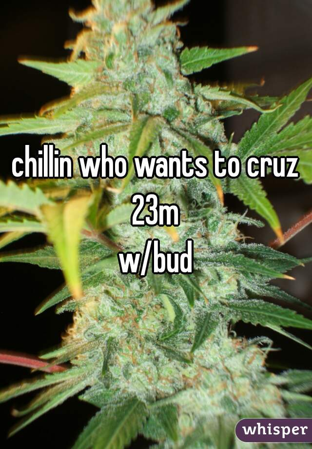 chillin who wants to cruz 23m  w/bud