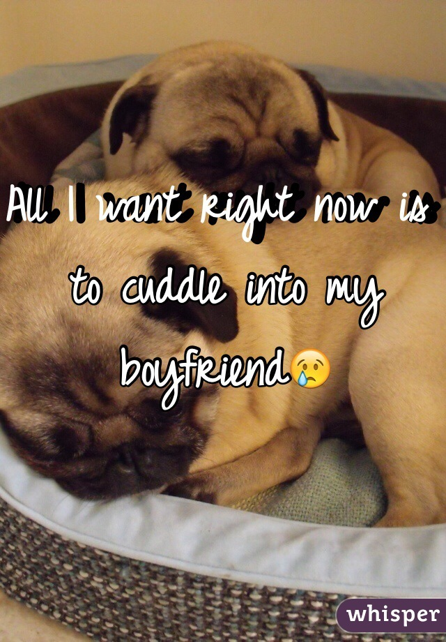 All I want right now is to cuddle into my boyfriend😢