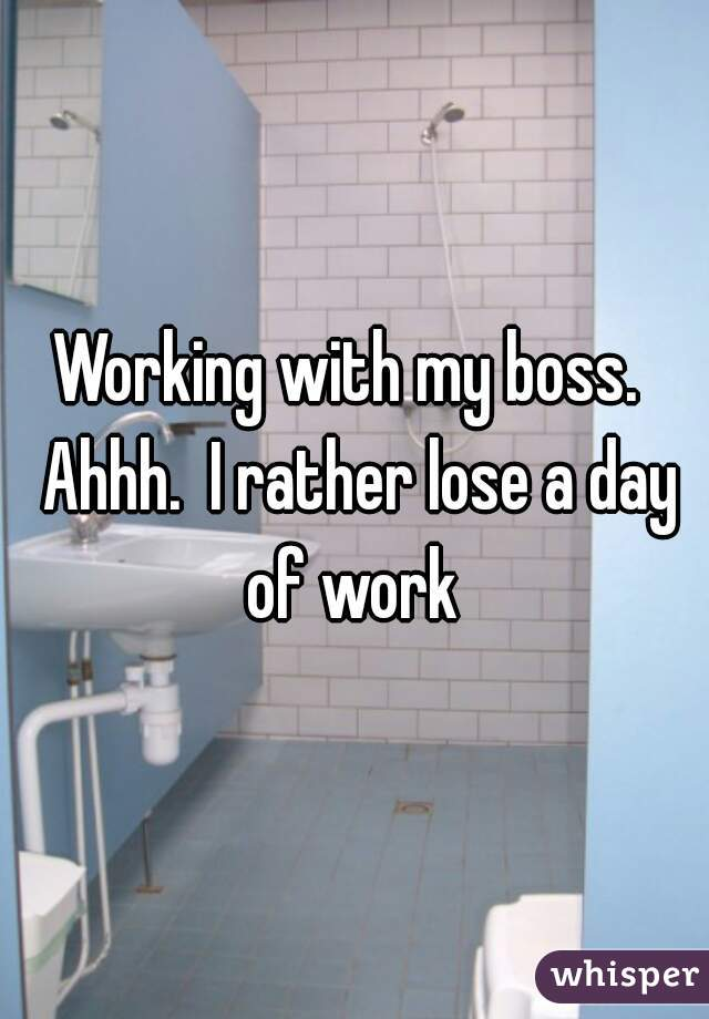Working with my boss.  Ahhh.  I rather lose a day of work
