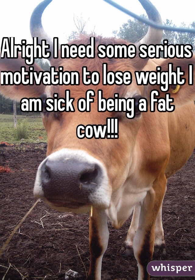 Alright I need some serious motivation to lose weight I am sick of being a fat cow!!!
