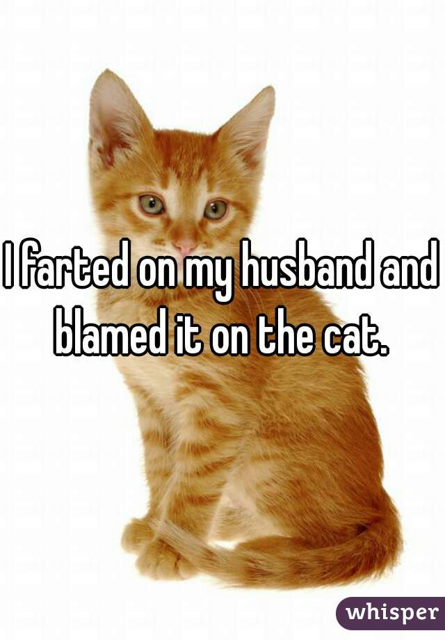I farted on my husband and blamed it on the cat.