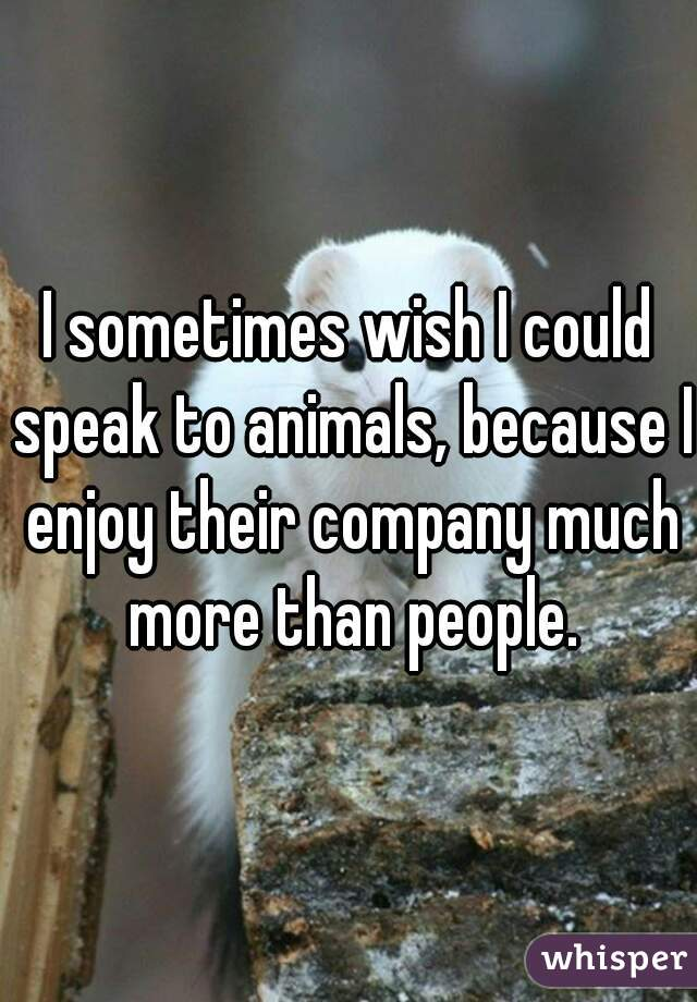 I sometimes wish I could speak to animals, because I enjoy their company much more than people.