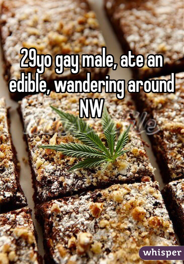 29yo gay male, ate an edible, wandering around NW