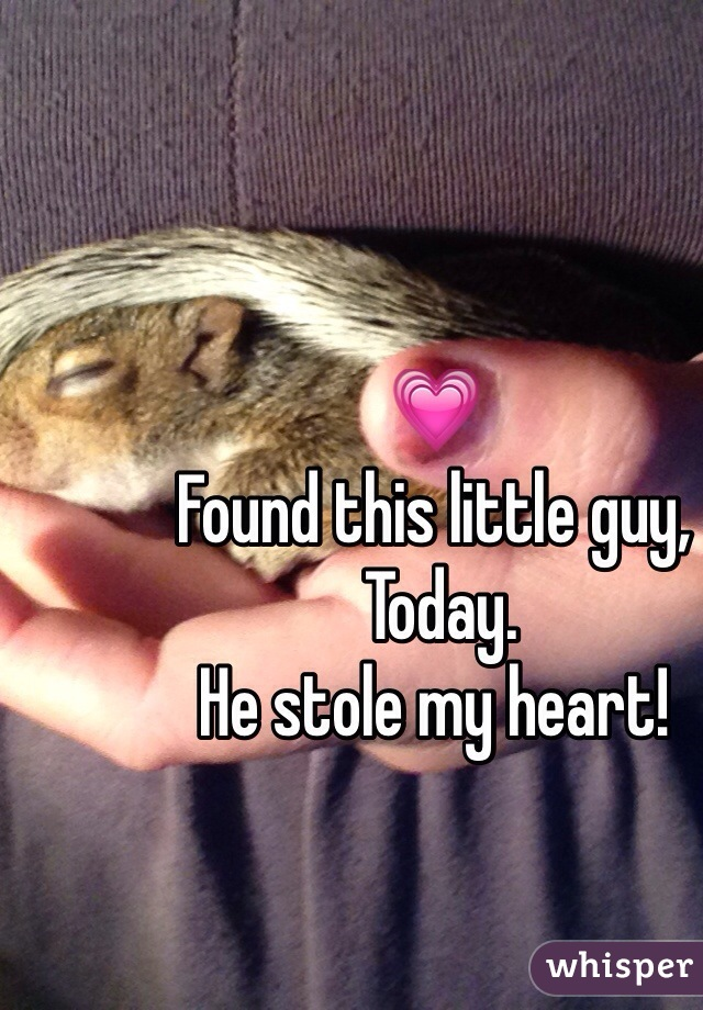 💗  Found this little guy,  Today.  He stole my heart!