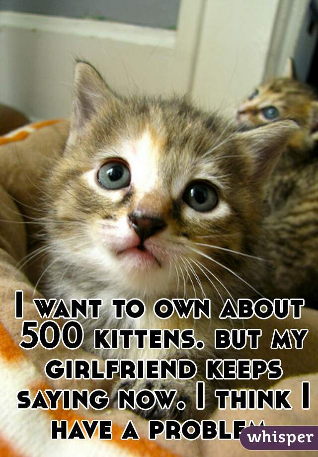 I want to own about 500 kittens. but my girlfriend keeps saying now. I think I have a problem.
