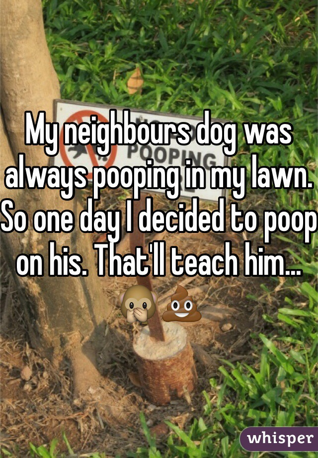 My neighbours dog was always pooping in my lawn. So one day I decided to poop on his. That'll teach him... 🙊💩