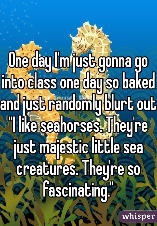 """One day I'm just gonna go into class one day so baked and just randomly blurt out """"I like seahorses. They're just majestic little sea creatures. They're so fascinating."""""""
