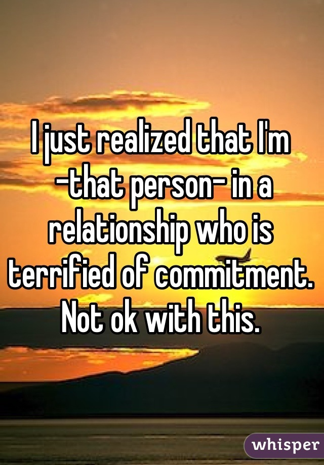 I just realized that I'm  -that person- in a relationship who is terrified of commitment.  Not ok with this.