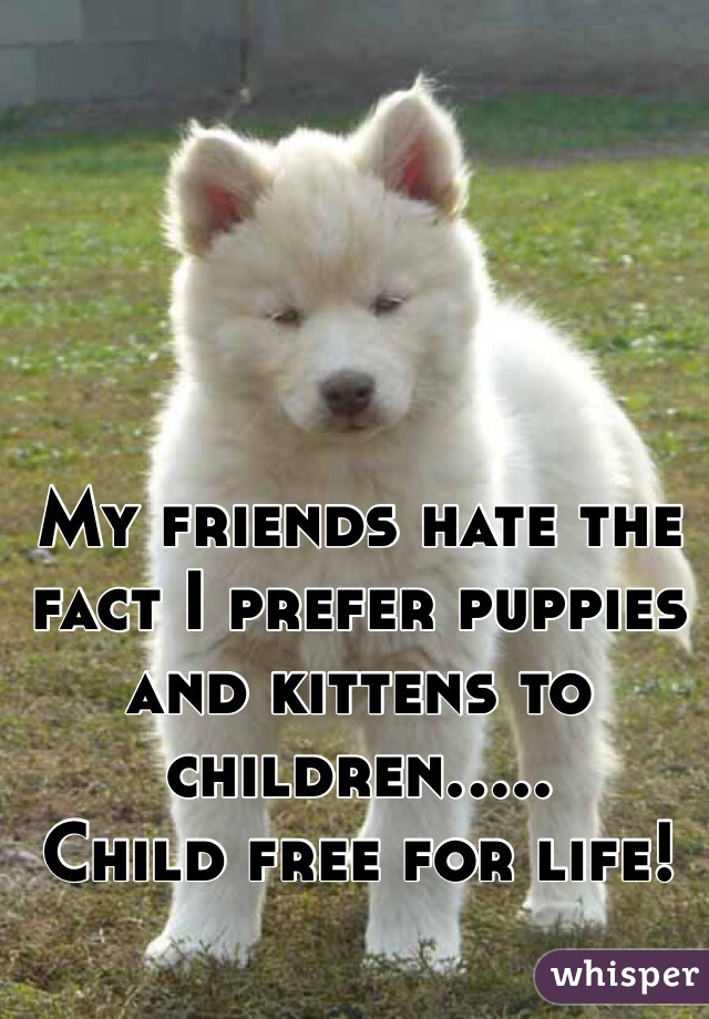 My friends hate the fact I prefer puppies and kittens to children..... Child free for life!