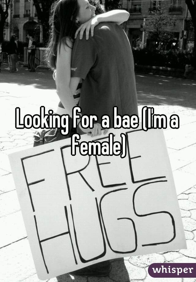 Looking for a bae (I'm a female)