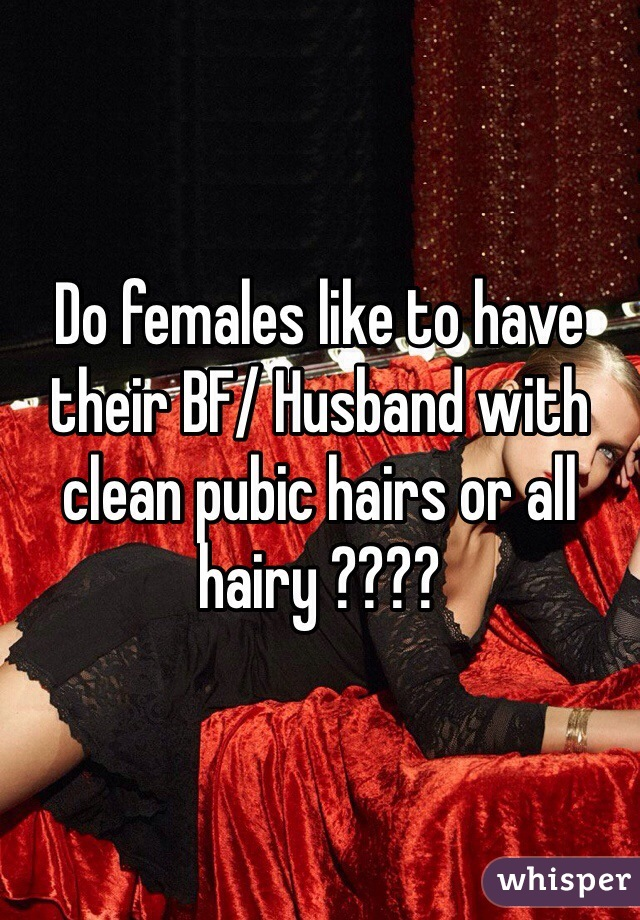 Do females like to have their BF/ Husband with clean pubic hairs or all hairy ????