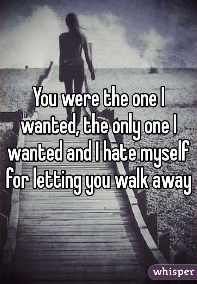 You were the one I wanted, the only one I wanted and I hate myself for letting you walk away