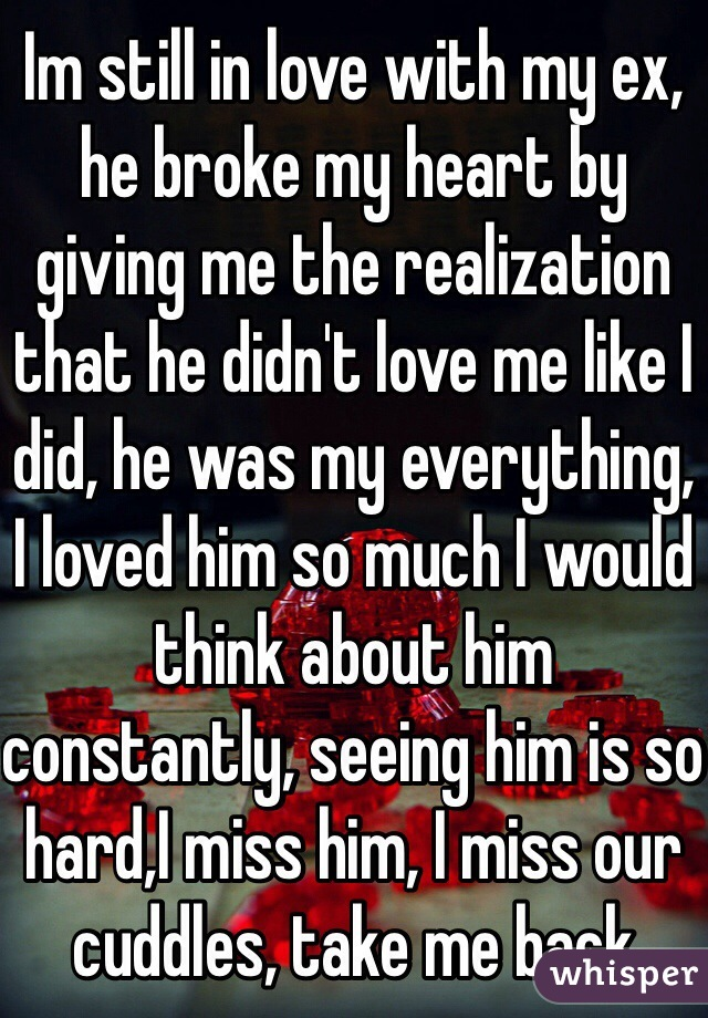 Im still in love with my ex, he broke my heart by giving me the realization that he didn't love me like I did, he was my everything, I loved him so much I would think about him constantly, seeing him is so hard,I miss him, I miss our cuddles, take me back
