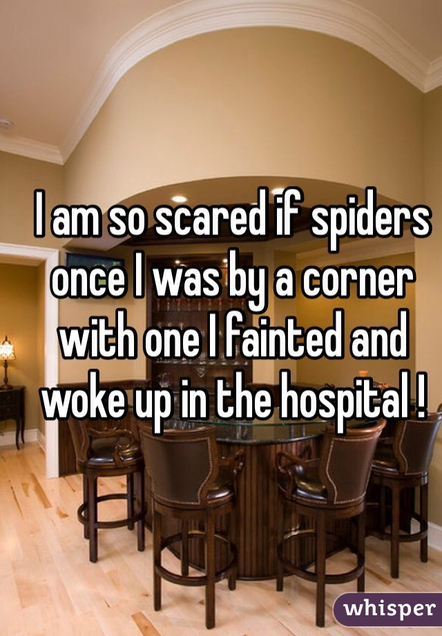 I am so scared if spiders once I was by a corner with one I fainted and woke up in the hospital !
