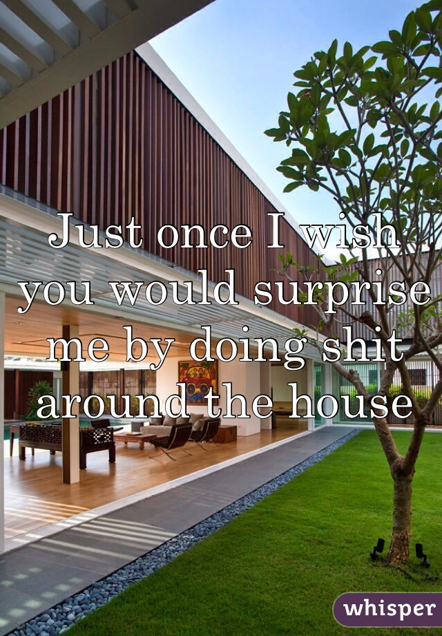 Just once I wish you would surprise me by doing shit around the house