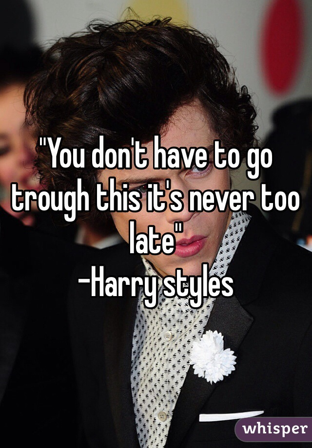 """""""You don't have to go trough this it's never too late"""" -Harry styles"""
