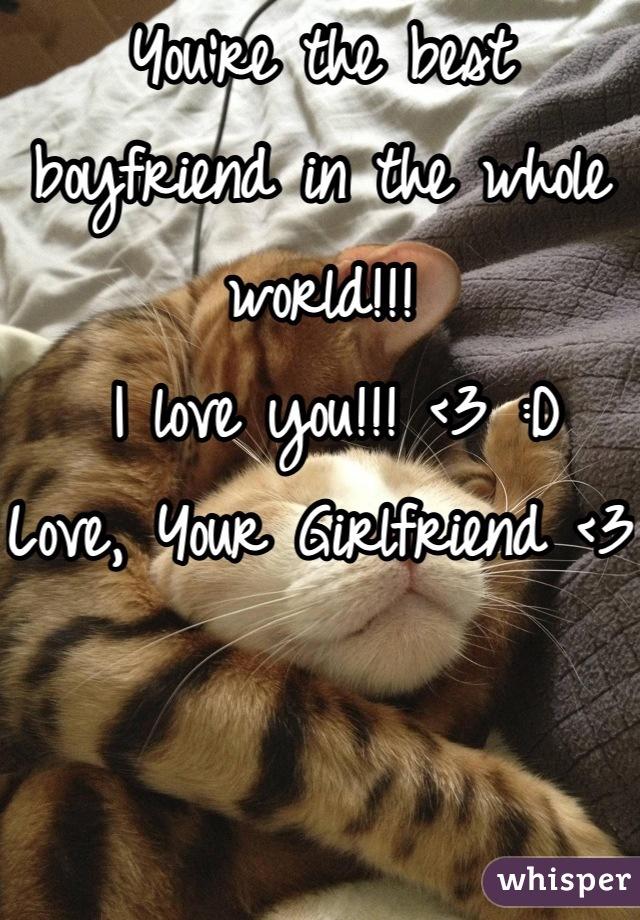 You're the best boyfriend in the whole world!!!  I love you!!! <3 :D Love, Your Girlfriend <3