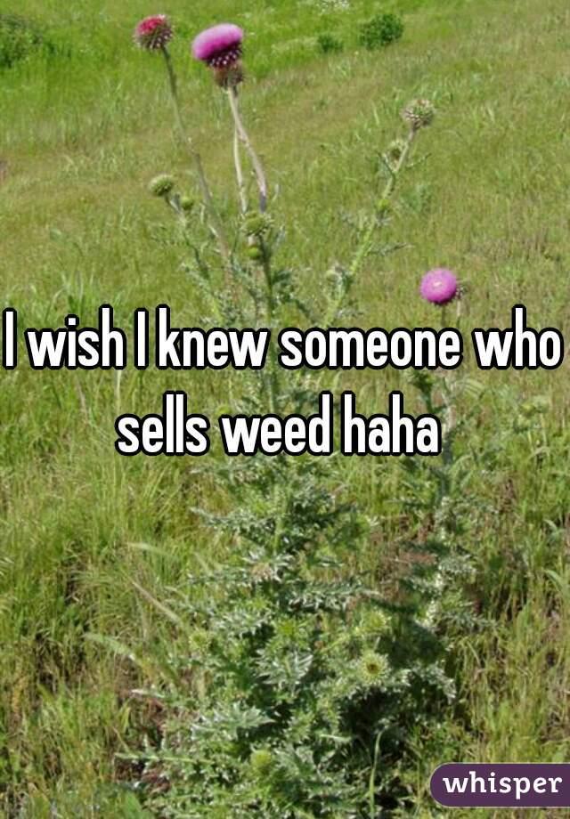 I wish I knew someone who sells weed haha