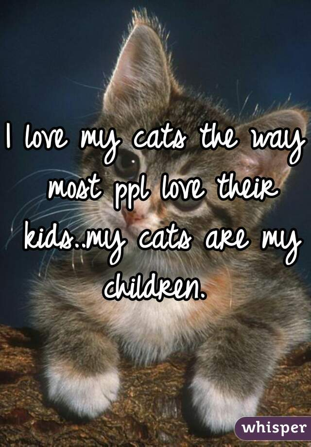 I love my cats the way most ppl love their kids..my cats are my children.