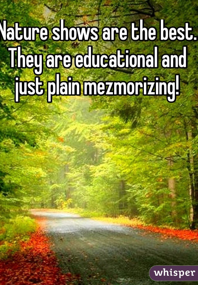 Nature shows are the best. They are educational and just plain mezmorizing!