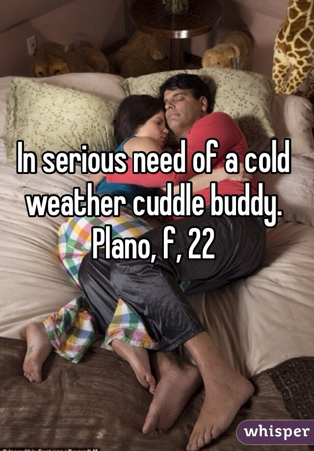 In serious need of a cold weather cuddle buddy. Plano, f, 22